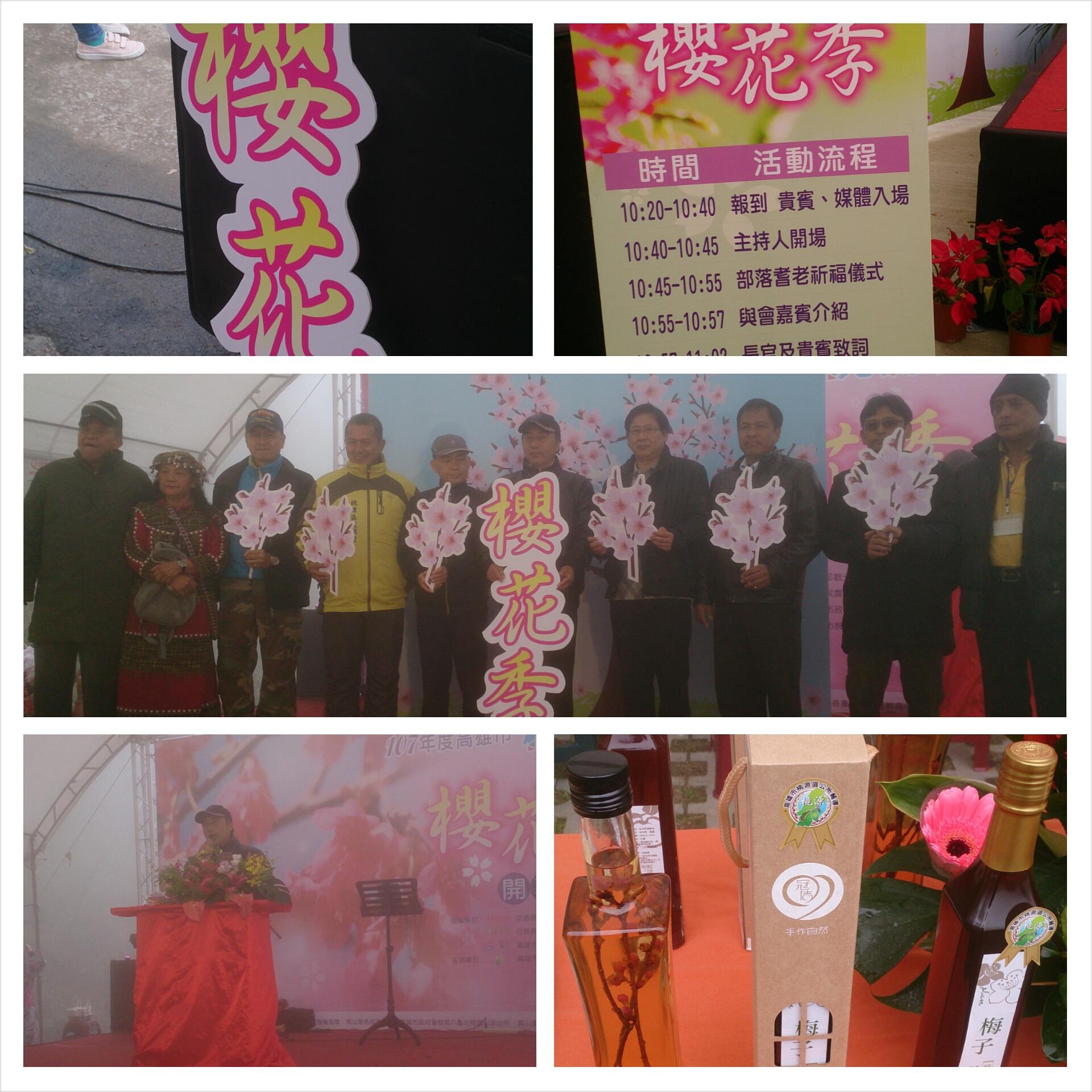 1070203  寶山櫻花公園櫻花季