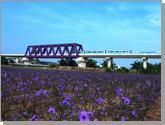 Zihbao Bridge