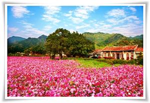 Meinong Scenery