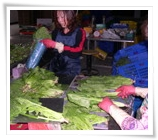 organic vegetables (Packing)