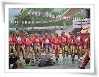 Shell Festival