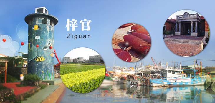 Welcome to Zihguan Distrct Office