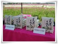 Meinong Rice