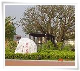 Mi-tuo Park(Pai)