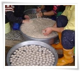 Milkfish Ball(Production process)