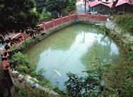 龍目井蓄水池
