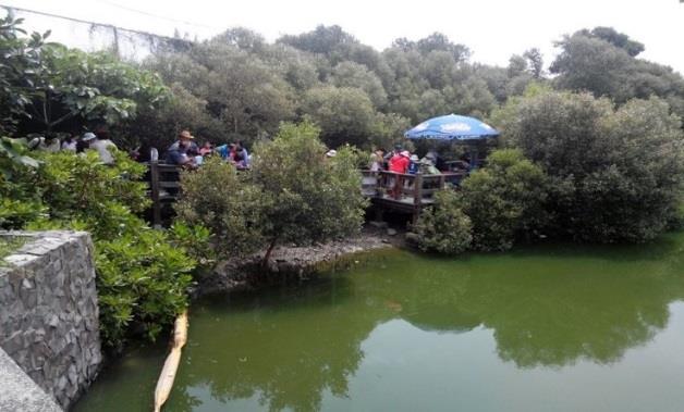 援中港濕地