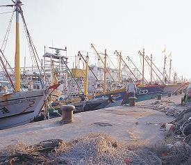 蚵仔寮漁港港邊