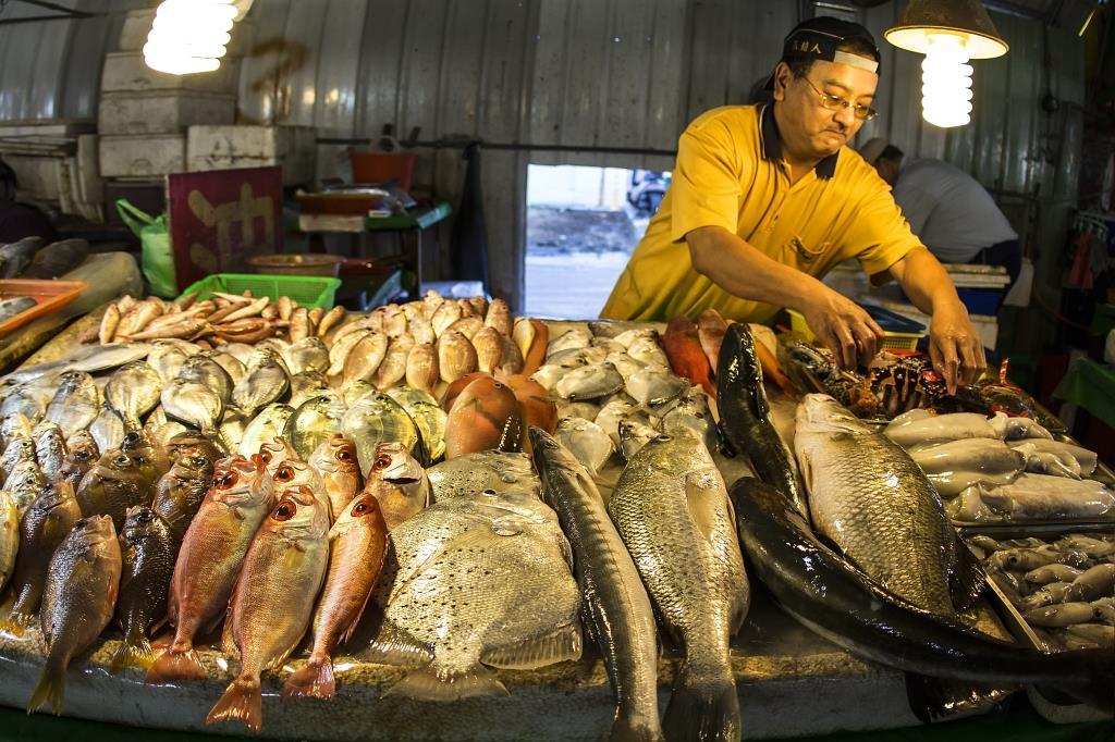 觀光魚市場