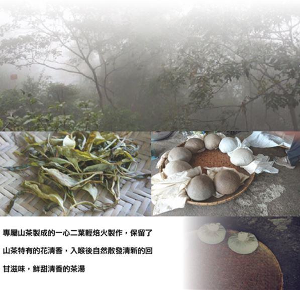 台灣原生種喬木野韻青茶 2兩75g/375元