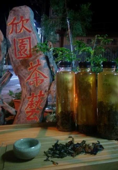 商品名稱:冷泡茶(原生山茶.原生紅茶.高山烏龍)