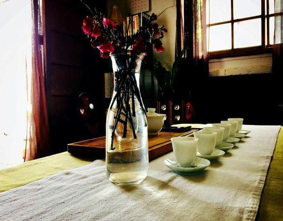 山茶FAXIAN SHAN CHA桌景象