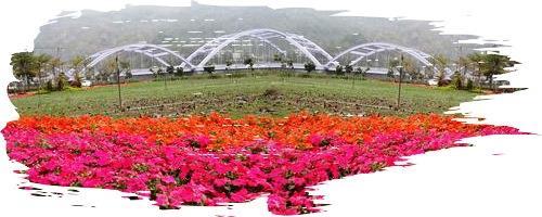 甲仙親水公園
