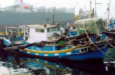 CT1:漁船噸數為5噸以上未滿10噸