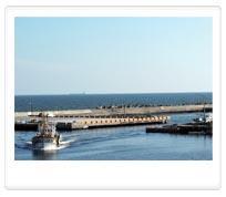蚵仔寮漁港-觀光魚市