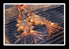 美味烤魷魚